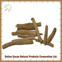 Burdock root/Burdock root tea/Burdock root extract