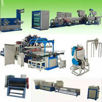 PS Disposable Foam Food Container(Lunch Box) and Ceiling Production Line