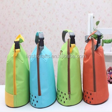 Reusable portable cooler bag