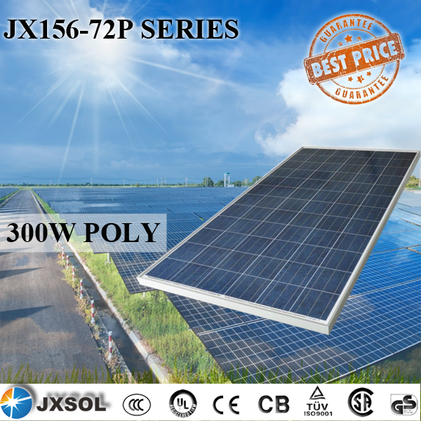 Polycrystalline Silicon High Power Efficiency Solar Panels 300Watt