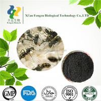 100% pure black ants extract powder & african black ants sex pills & black ants sex pills
