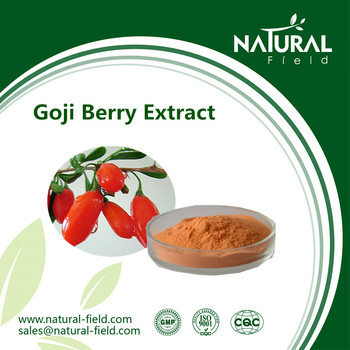 Best Sells Product Goji Berry Extract Powder, Reb Wolfberry Extract