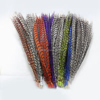 High Quality Cheap Dyed Lady Zebra Pheasant Feather for Holidays