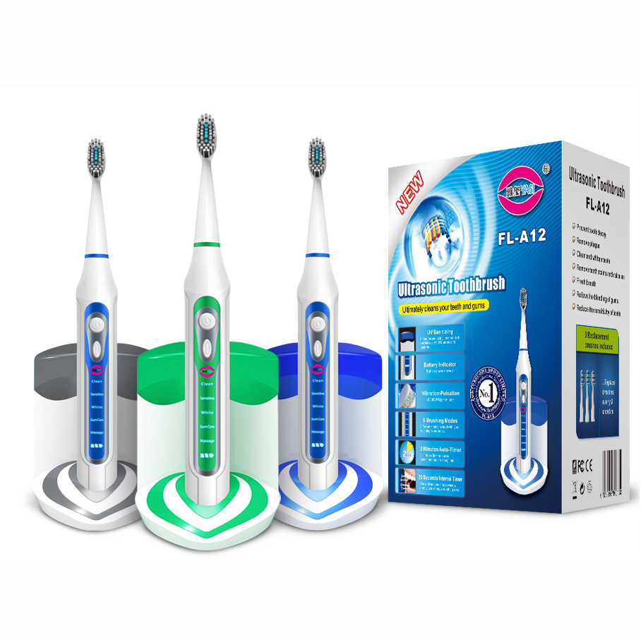 Replaceable Head Inductive Charging Base With a AC Plug Sonic Electric Toothbrush