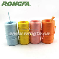 hot sale multicolor paper raffia wire