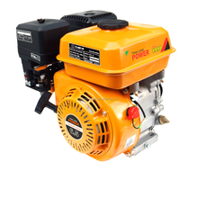 5.5HP Micro Ohv 4-Stroke Small Gasoline Engine (168FA)
