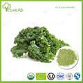 100% natural curly kale powder kale extract