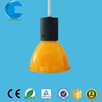 Q&C 40W indoor high brightness COB led pendant light bison meat and crocodile meat