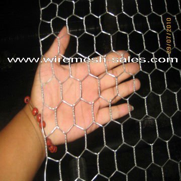 wire mesh (Hex wire mesh, welded wire mesh, chain link fence etc )