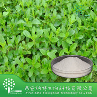 Natural Healthy Sweetener Stevia Extract(steviol Glycosides 98%,Sg98)