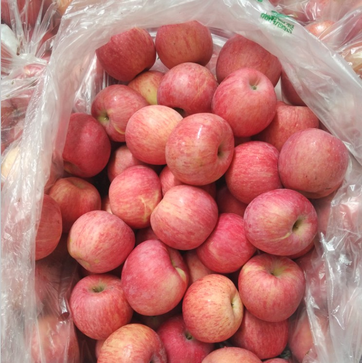Fresh Fruit Market Prices Fresh Apple Fresh Fuji Apple Exporter In China