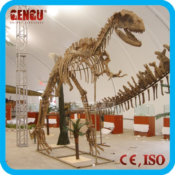 Indoor Life Size Dinosaur Statues