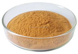 Professional red clover extract with low price