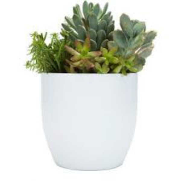 [ ZIBO HAODE CERAMICS]manufacturer wholesale ECO-friendly glazed surface white flower pot for indoor green plant no hole