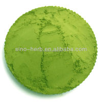 Free Sample Organic Instant Matcha Green Tea Powder