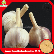 Best quality raw material garlic extract,allicin powder