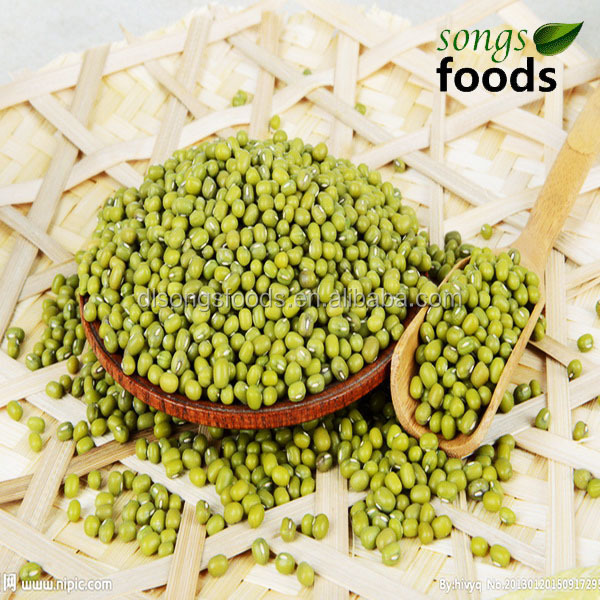 Green Mung Beans In China
