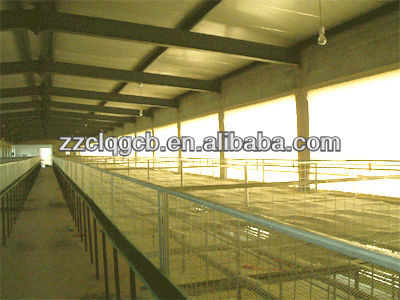 Henan canglong light and large prefab poultry house