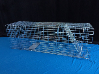 galvanized collapsible trap cage feral cat made in China