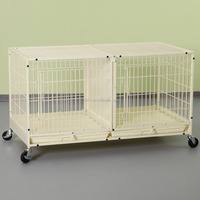 Commercial Small Metal Dog Cage with Plastic Tray