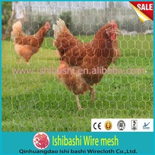 China supplier PVC bird cage mesh/ chicken wire mesh