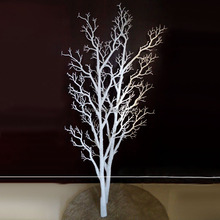 hot sale dry tree for decoration