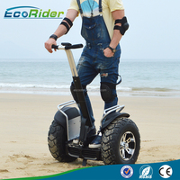 China Factory Cheap 2 Wheel Electric Chariot For Sale 2 Wheels Powered