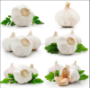 /product-detail/upeeled-garlic-price-of-2018-crop-natural-garlic-60617792685.html