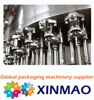 Small Carbonated Drink Filling Machine Manual Bottle Filling Machine