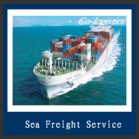 China Top Reliable international logistics by sea to Milan-Alex