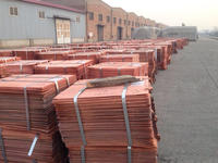 copper cathode 99.99% sale well 99