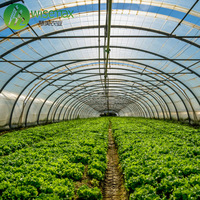 Low cost high tunnel aquaponics systems agricultural greenhouses