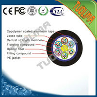 TUOLIMA Outdoor GYTA 36count Fiber Optical Cable