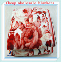 different kinds of fabrics with pictures wholesale flannel blanket