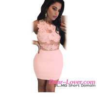 Sexy Girl Tight Mini Dress 2016 Newly Pink Lace Mesh Applique Bodycon Dress Wholesale