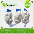 world best selling wholesale garlic importers