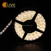 low voltage outdoor led strip light