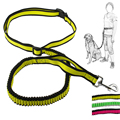 Aamzon Best Selling Custom Stretched Running Dog Leads