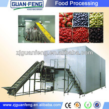 iqf blueberry quick freezing continous icecream freezer machine