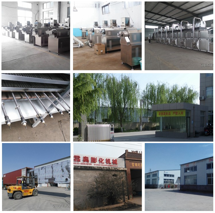 extrusion cereal breakfast corn flakes production line for sale