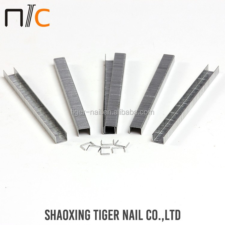 Wholesale Factory selling 15 degree coil nails picture