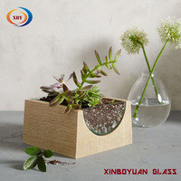 clear glass and wood airplant terrariums /wooden terrarium