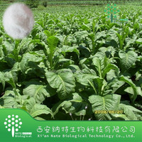 Herbal Extract Tobacco Extract Powder Solanesol