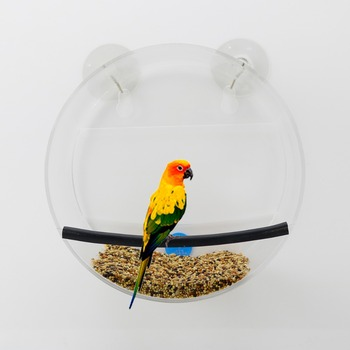 Custom circular cage, high-end imported raw materials process wall hanging type transparent frame to attract birds
