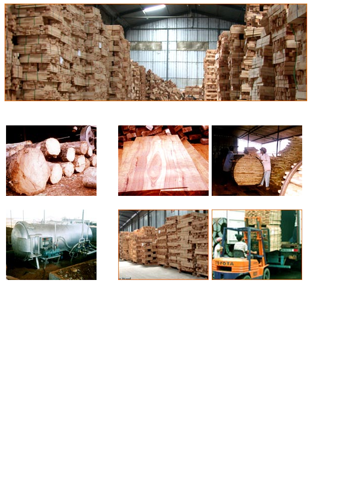 Sawn timber rubber wood/ Vietnam rubber wood timber