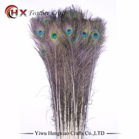 Factory Wholesale hobby lobby peacock feathers decoration