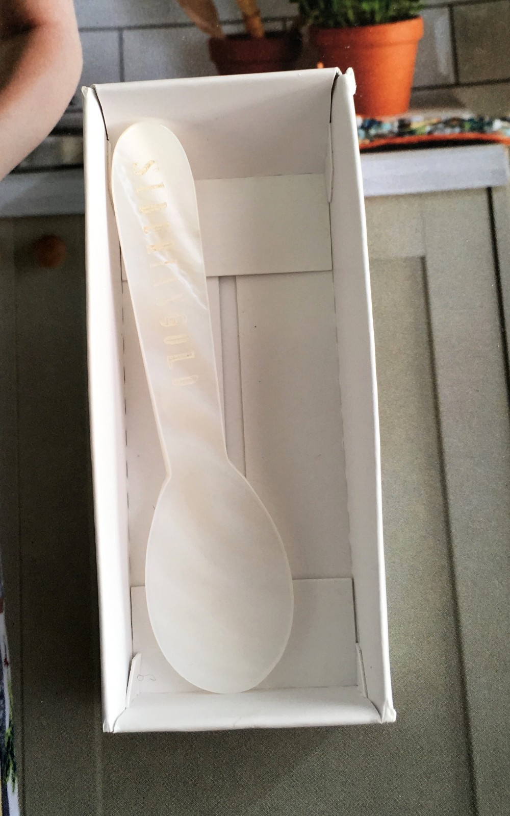 Natural shell mother pearl spoon for tasting caviar