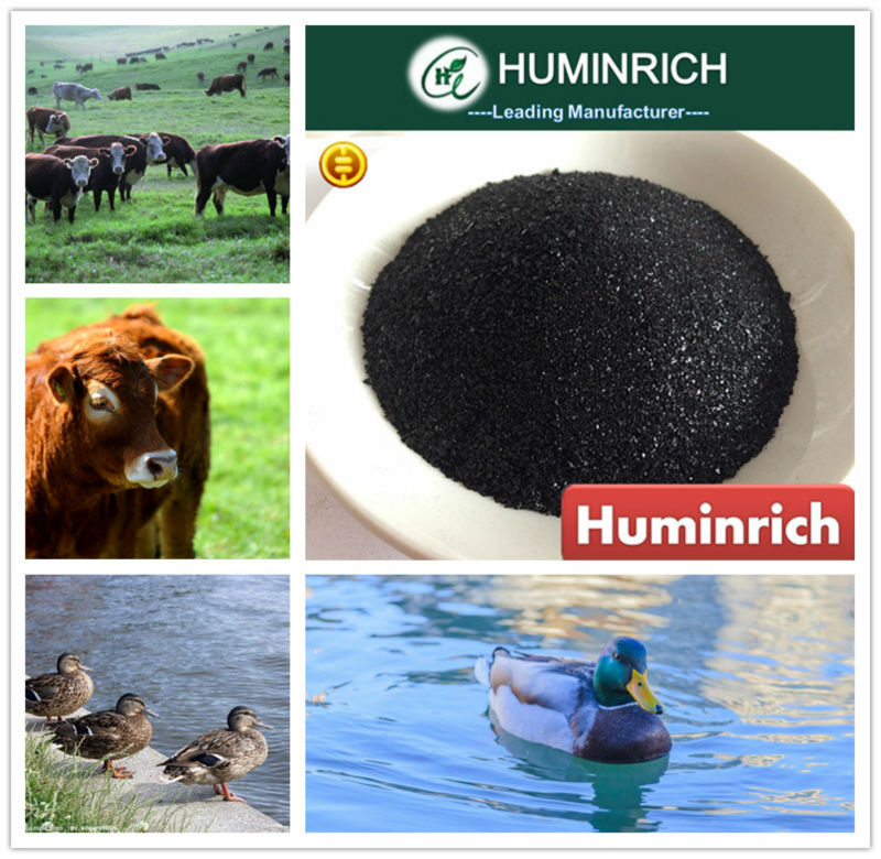 Huminrich Shenyang Sodium Humate dairy cattle feed manufacturers