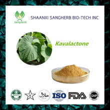 Manufacturer Supplier kava herb With Good Service