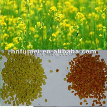 Dried Bee Pollen Granular (Multi- Flower/Tea Pollen)